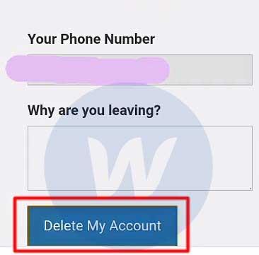 Isi Alasan Pada Kolom Di Laman Delete Account Telegram